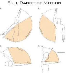 Full Range of Motion
